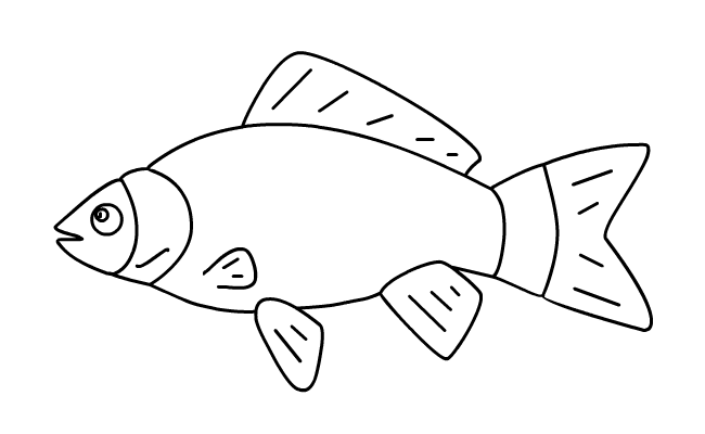 Kinderwoorddienst Broden En Vissen